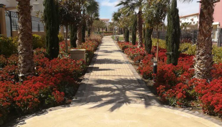HYDE PARK Gardens