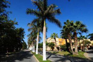 Palm Hills October realestate eg